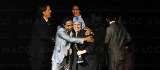 Gala de los Premios Ariel 2013.