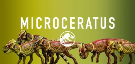 jurassic-world-microceratus-share-e1425241524151